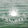 3decf1d8235 SUN OF A BEACH ΤΣΑΝΤΑΚΙ Watch out passepartour pouch - Baby Love